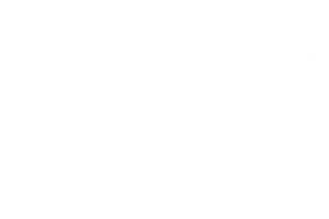 Caamaño Consulting | 2017